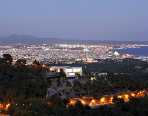 Chamäleon   Mallorca